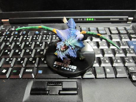 20090811_2.jpg